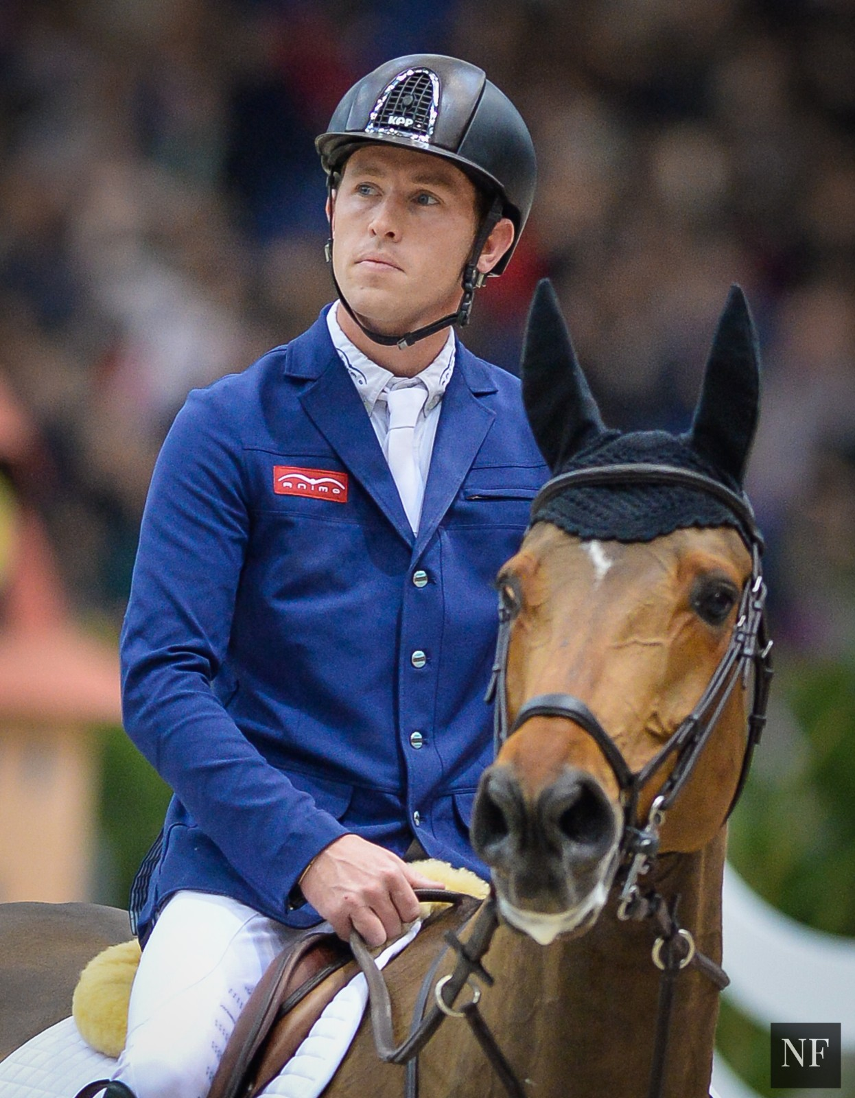 Horse Times Egypt: Equestrian Magazine :Riders Blog :NO RIO OLYMPICS FOR THE HONORED SCOTT BRASH