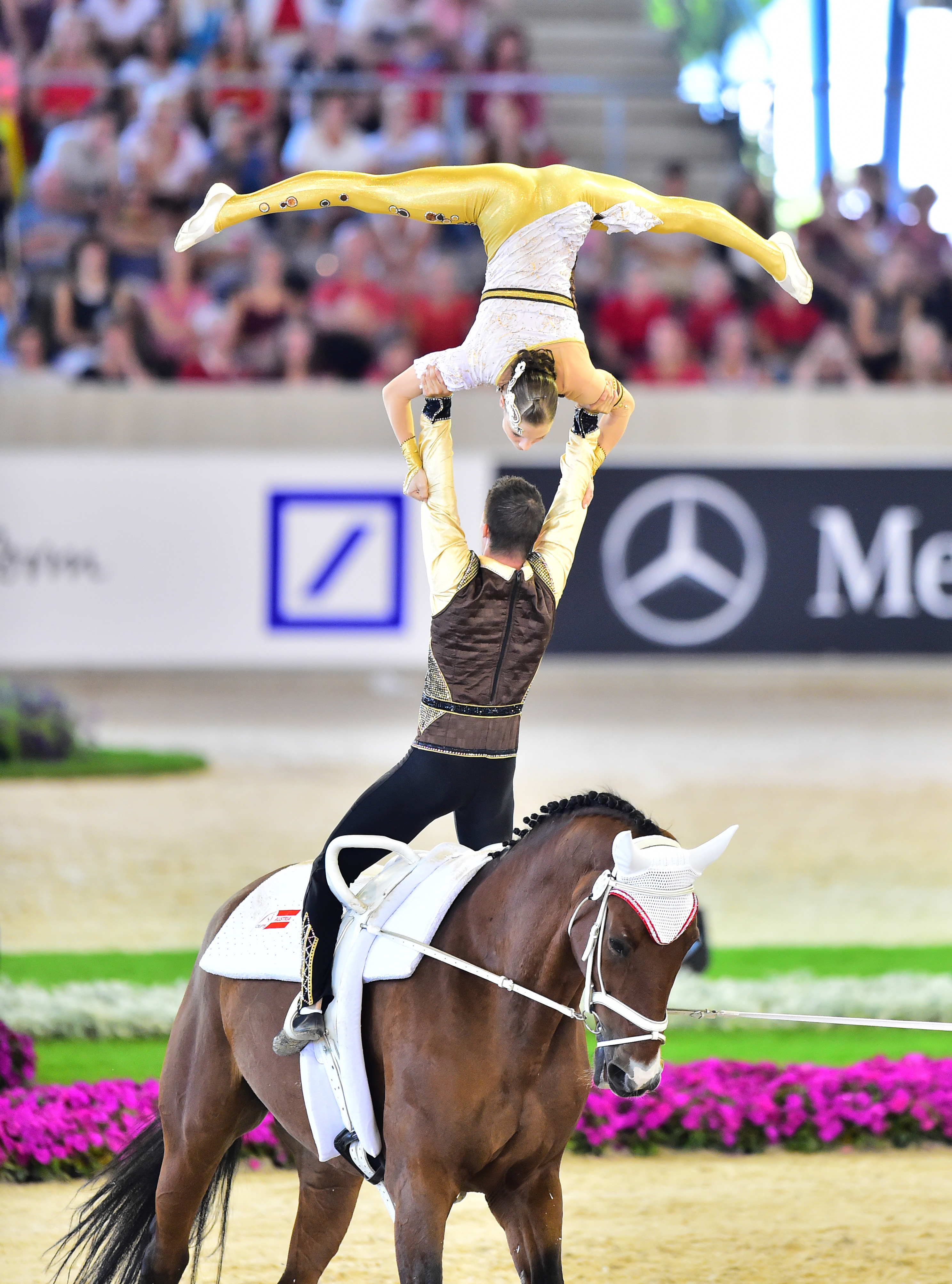 Horse Times Egypt: Equestrian Magazine :News :GERMANY AND AUSTRIA CLAIM EUROPEAN CHAMPIONSHIPS VAULTING GOLD