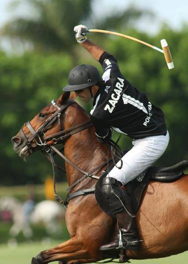 Horse Times Egypt: Equestrian Magazine :News :DUBAI SOUNDLY BEATS THE MIGHT ZACARA