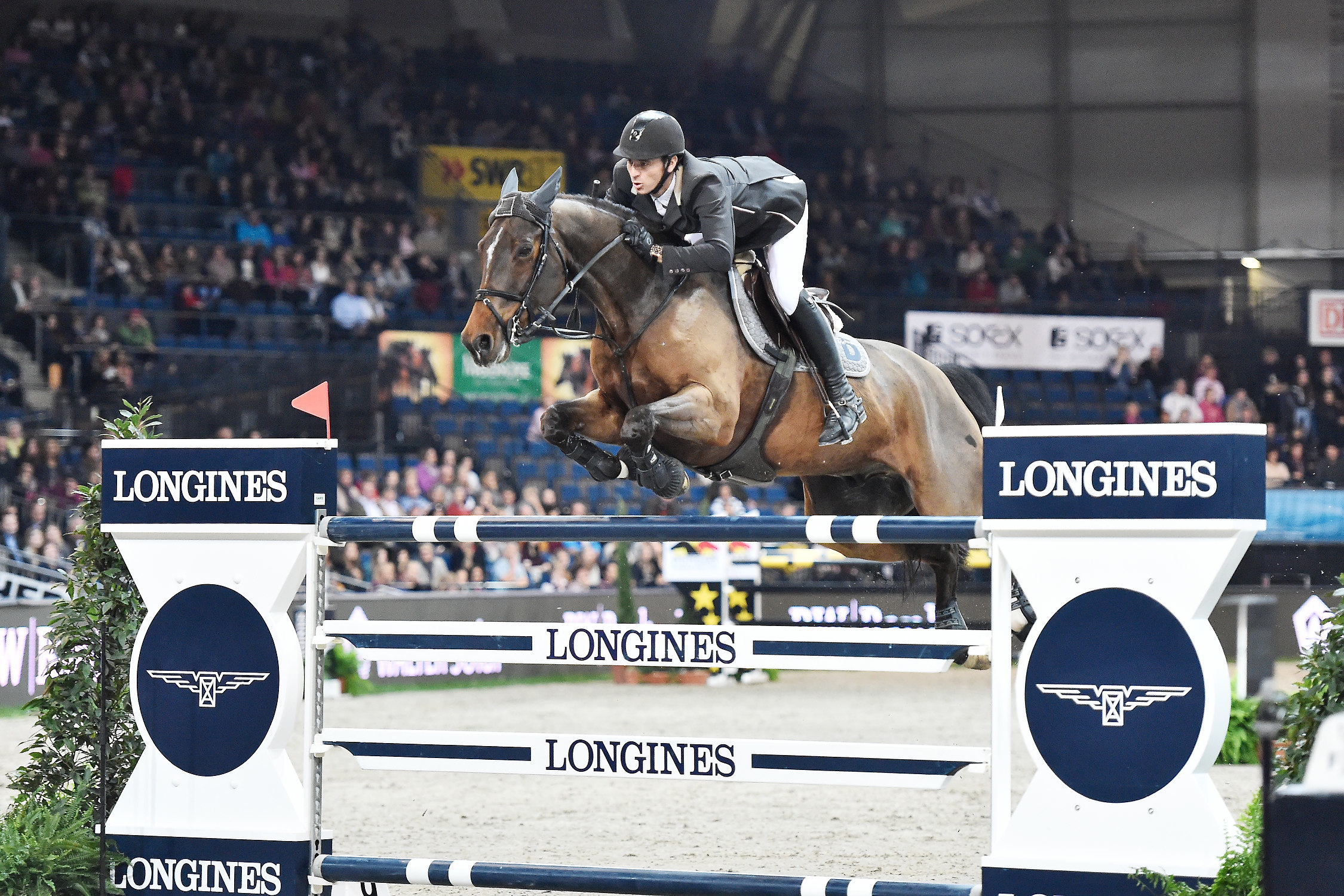 Horse Times Egypt: Equestrian Magazine :News :FEI TRIBUNAL MAINTAINS PROVISIONAL SUSPENSIONS ON SWISS JUMPING HORSES