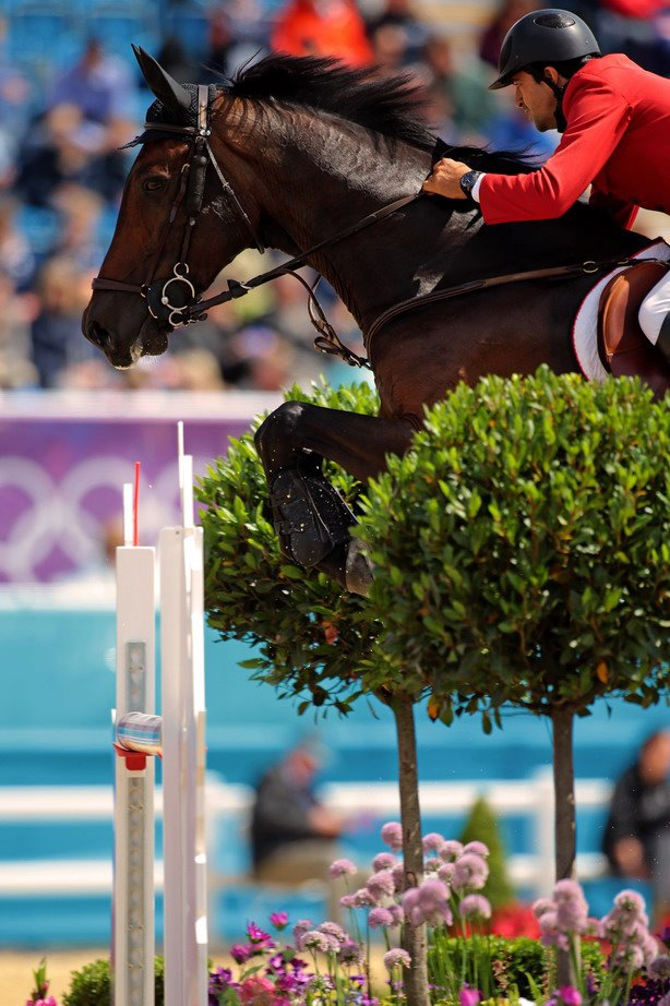 Horse Times Egypt: Equestrian Magazine :News : LONDON 2012 OLYMPIC SHOW JUMPING - DUTCH OFF TO FLYING START