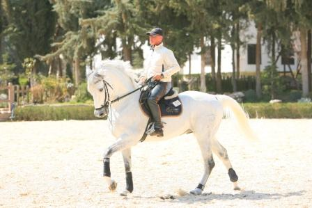 Horse Times Egypt: Equestrian Magazine :News :DEVELOPING YOUR RIDING SKILLS
